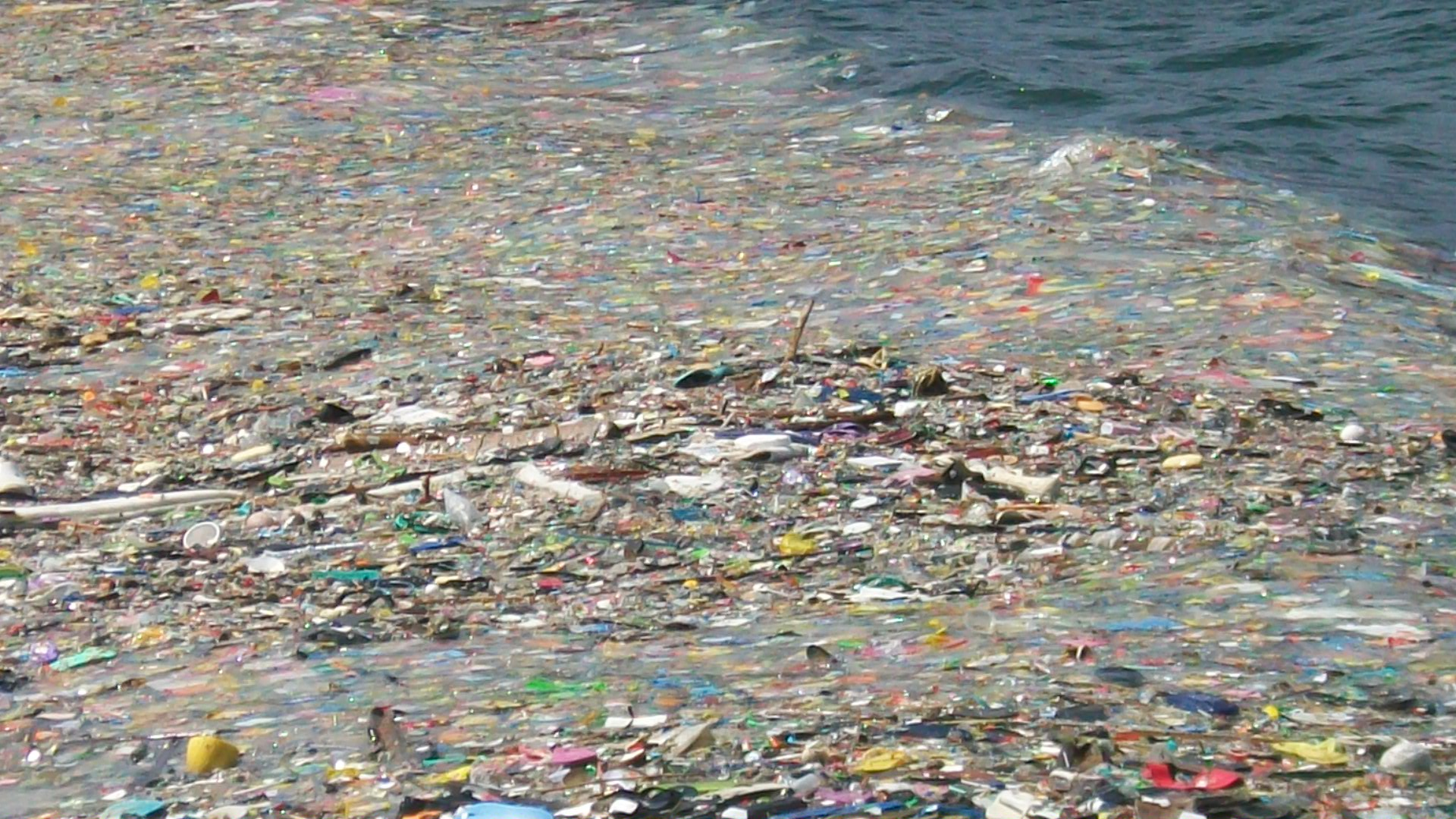 Eastern pacific garbage patch photos # Before And After Weight Loss Photos Women - Meal Plan