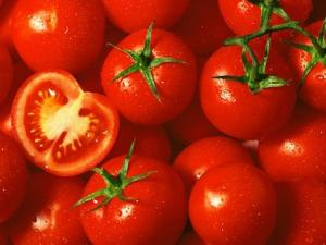 Greek-tomatos12