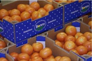 Greek-tomatoes12345