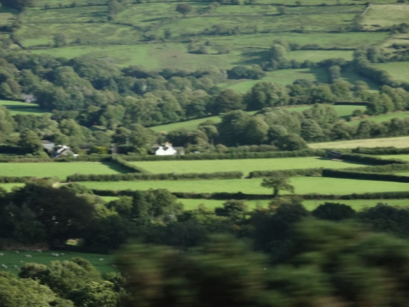 Devon Farmland