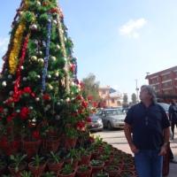 Christmas Season in Kathmandu