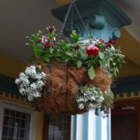 Making Hanging Baskets