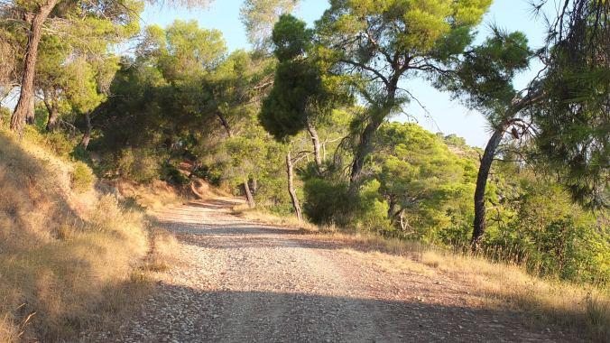 Hike to Zogaria
