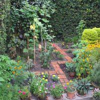 How (not?) to garden in Kathmandu