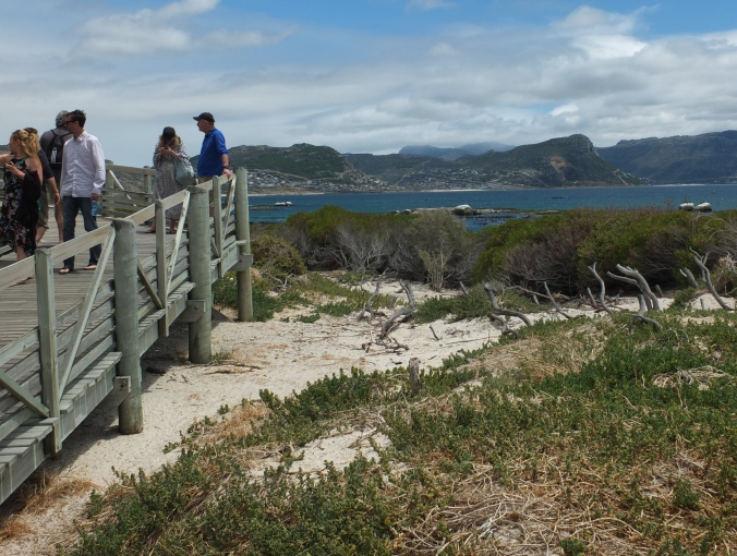 Beach walkway at Boulders Penguin Colony