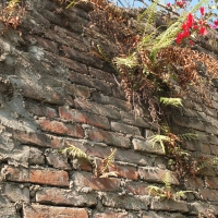 Weekly Word Challenge: Brick Wall