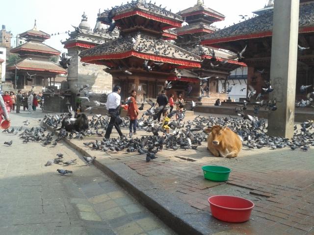 Kathmandu Dhurba Square